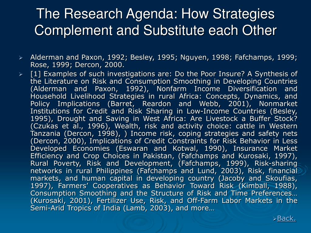 The Research Agenda: How Strategies Complement and Substitute each Other