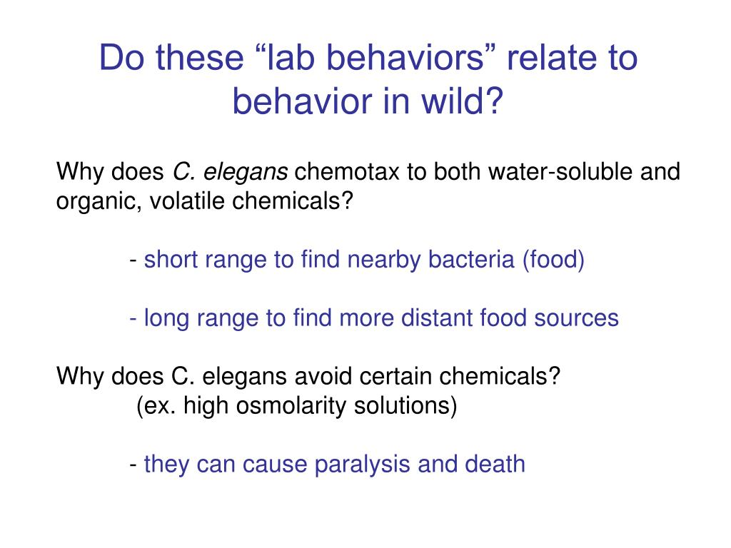 "Do these ""lab behaviors"" relate to behavior in wild?"