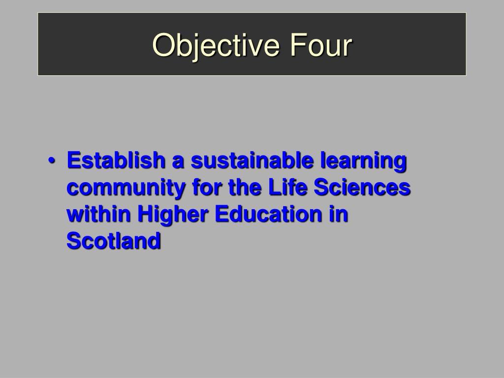 Objective Four