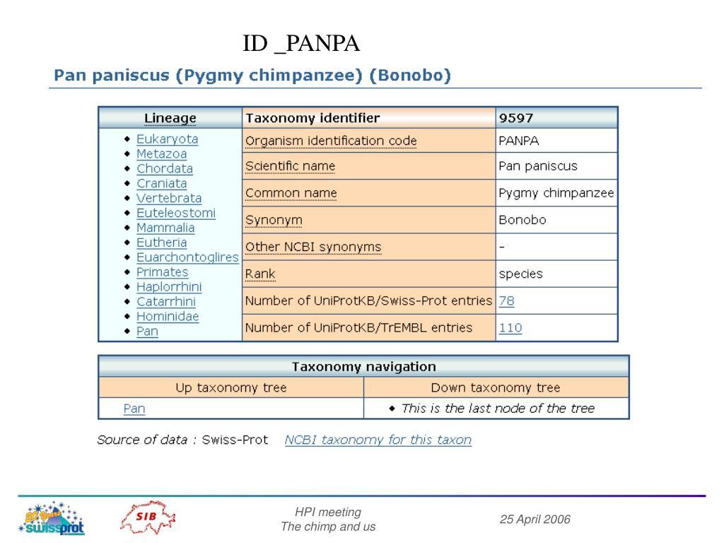 ID _PANPA