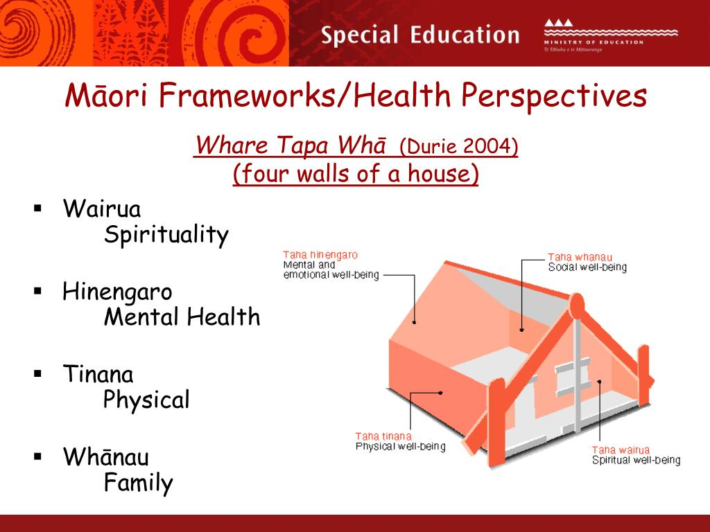 Māori Frameworks/Health Perspectives