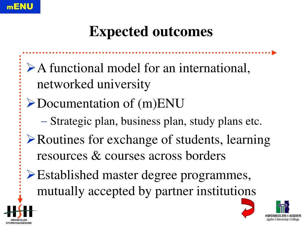 A functional model for an international, networked university