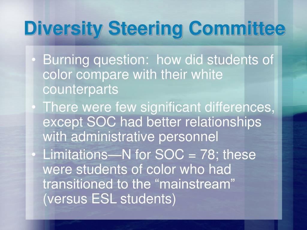 Diversity Steering Committee