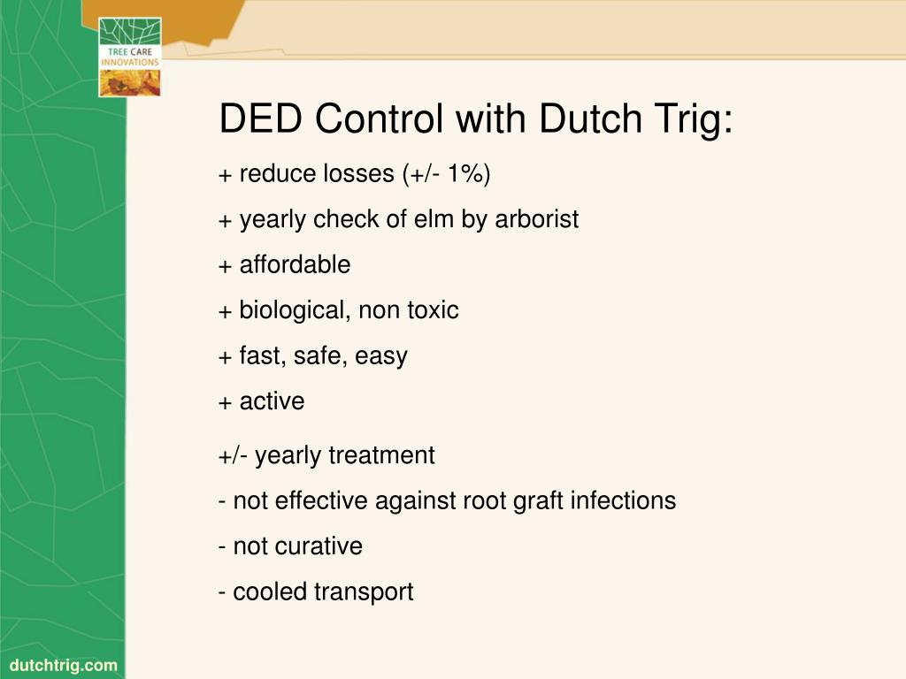DED Control