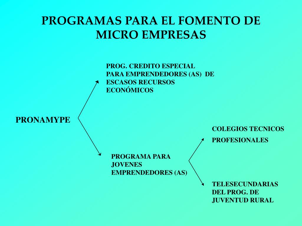 PROGRAMAS PARA EL FOMENTO DE MICRO EMPRESAS