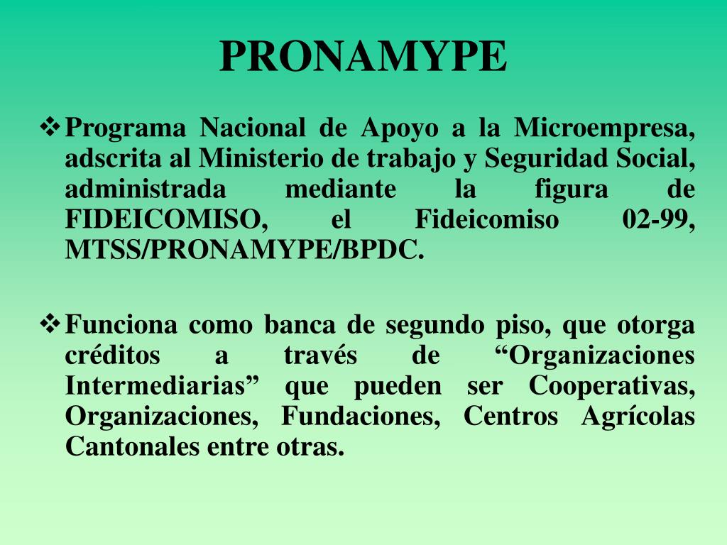 PRONAMYPE