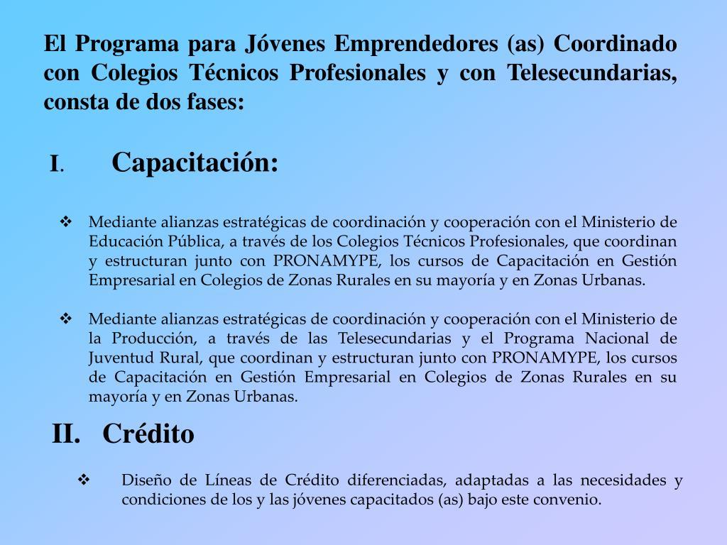 El Programa para Jóvenes Emprendedores (as) Coordinado con Colegios Técnicos Profesionales y con Telesecundarias, consta de dos fases:
