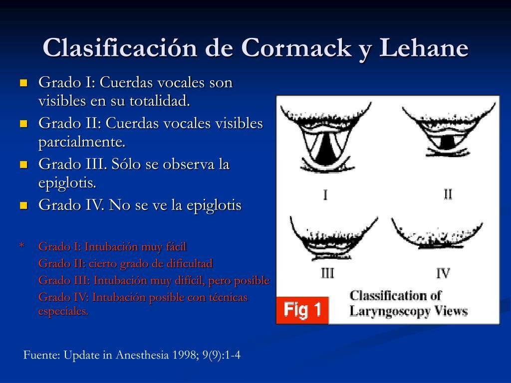 Grado I: Cuerdas vocales son visibles en su totalidad.