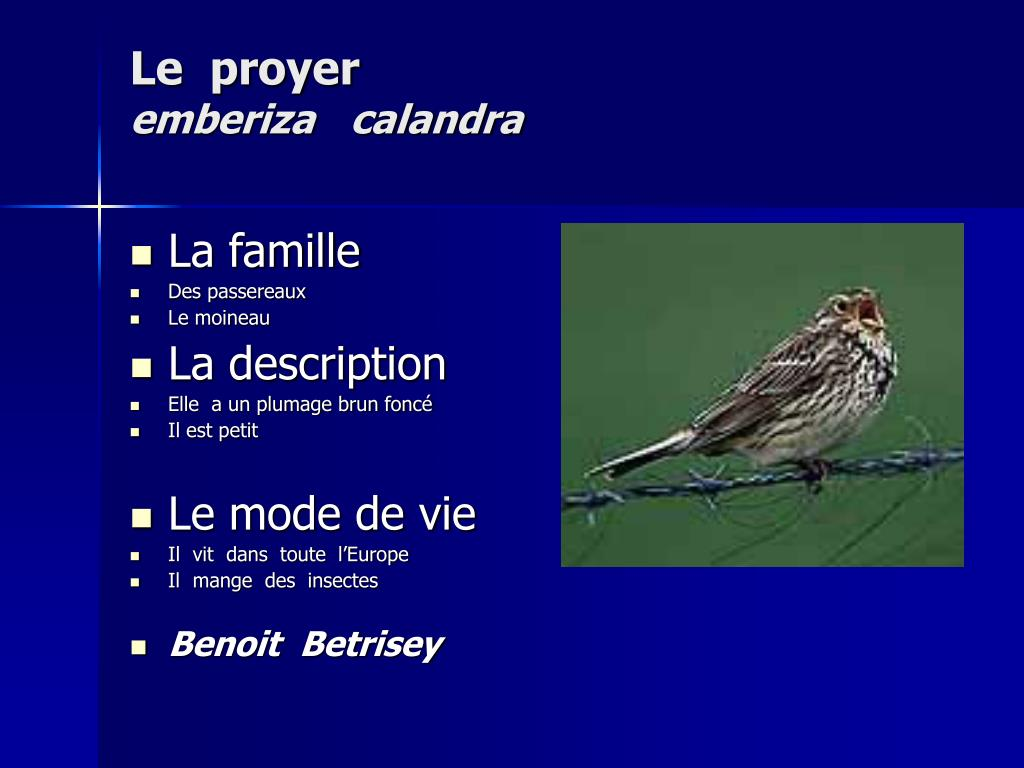 Le  proyer