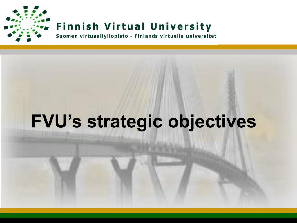 FVU's strategic objectives