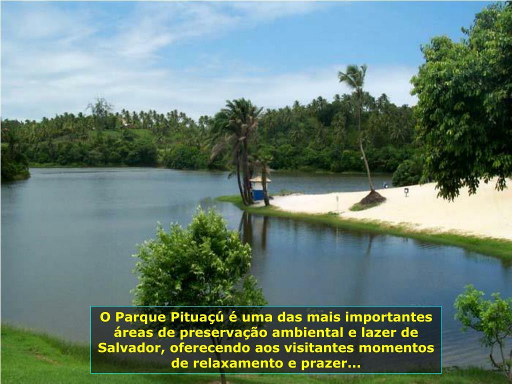 O Parque Pituaçú é uma das mais importantes áreas de preservação ambiental e lazer de Salvador, oferecendo aos visitantes momentos de relaxamento e prazer...