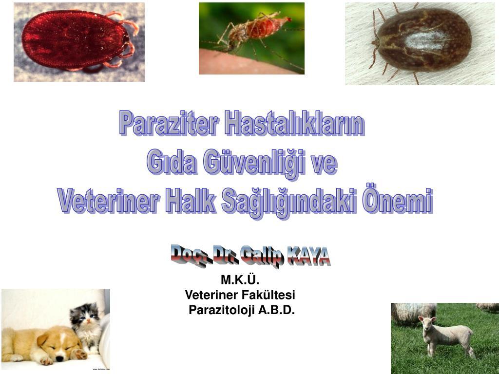 Paraziter Hastalıkların