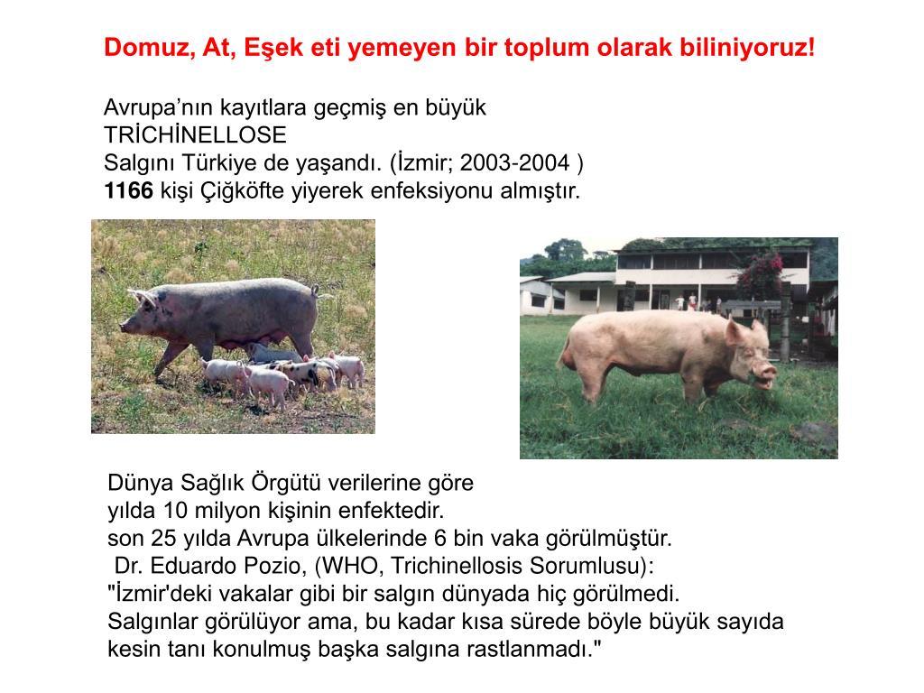Domuz, At, Eşek eti yemeyen bir toplum olarak biliniyoruz!
