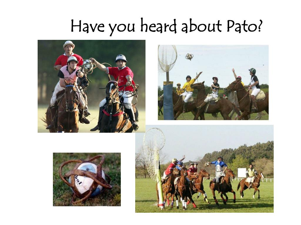 Have you heard about Pato?