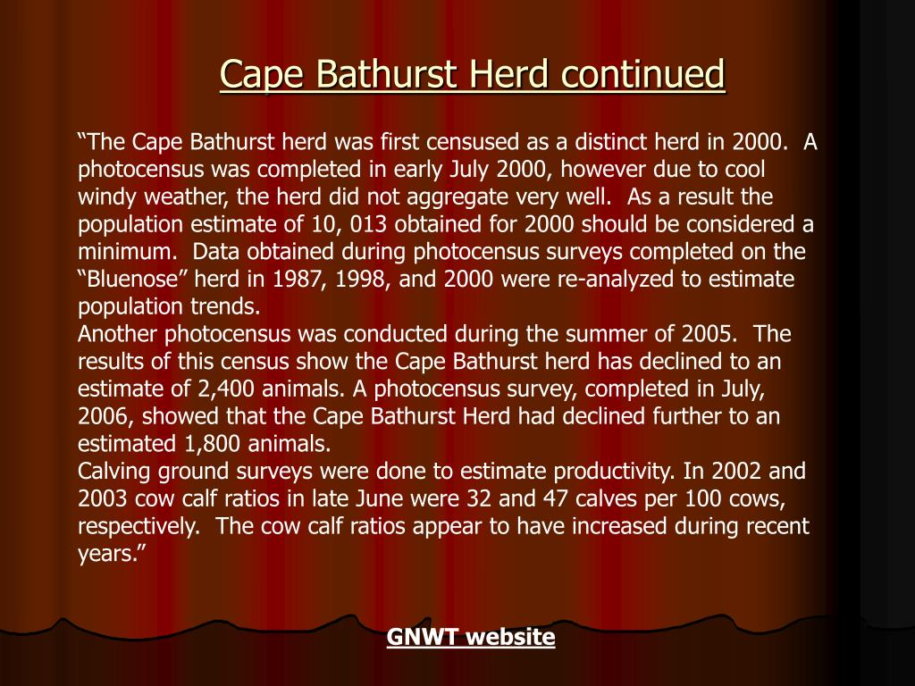 Cape Bathurst Herd continued