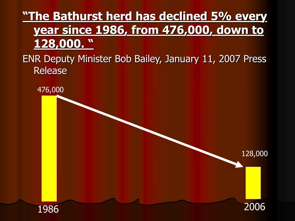 """The Bathurst herd has declined 5% every year since 1986, from 476,000, down to 128,000. """