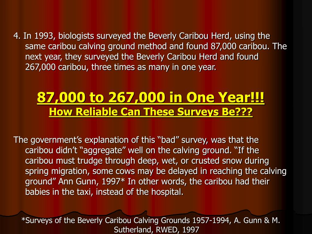 4. In 1993, biologists surveyed the Beverly Caribou Herd, using the same caribou calving ground method and found 87,000 caribou. The next year, they surveyed the Beverly Caribou Herd and found 267,000 caribou, three times as many in one year.