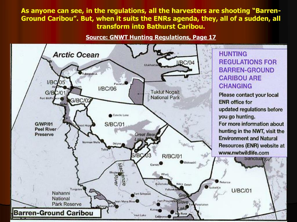 "As anyone can see, in the regulations, all the harvesters are shooting ""Barren-Ground Caribou"". But, when it suits the ENRs agenda, they, all of a sudden, all transform into Bathurst Caribou."