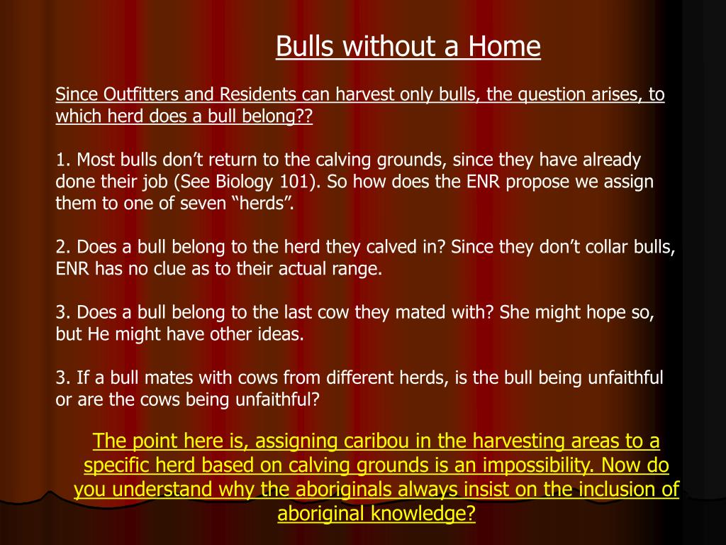 Bulls without a Home