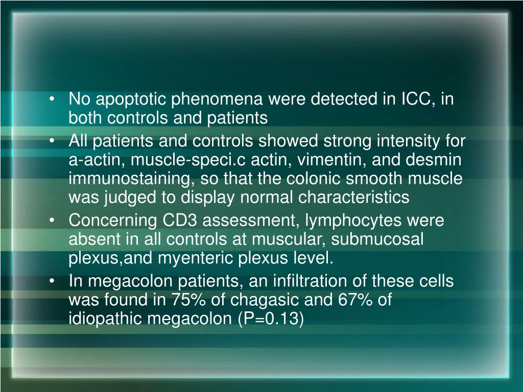 No apoptotic phenomena were detected in ICC, in both controls and patients