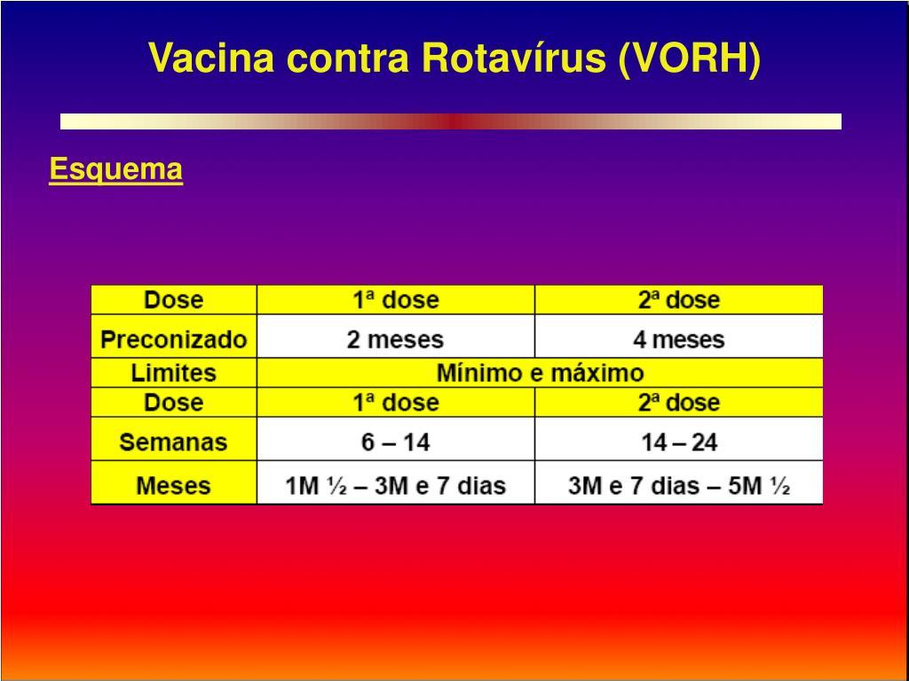 Vacina contra Rotavírus (VORH)