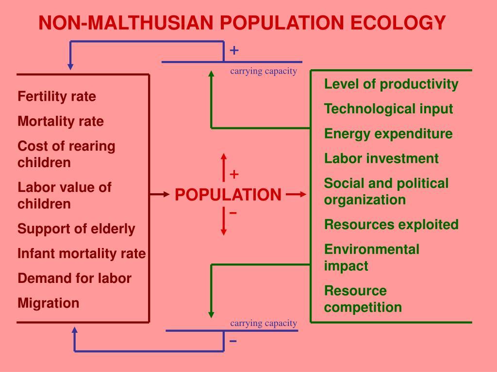 NON-MALTHUSIAN POPULATION ECOLOGY