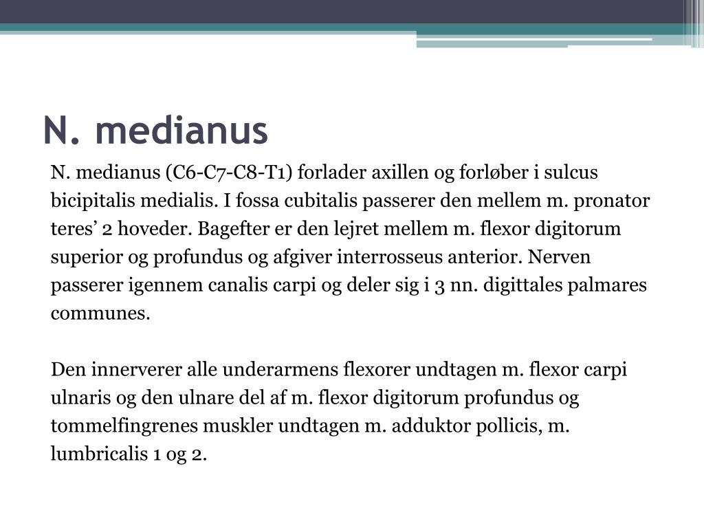 N. medianus