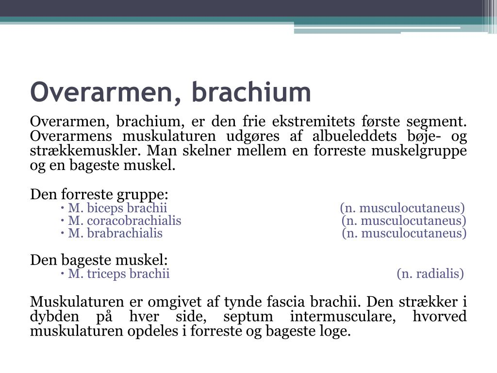 Overarmen, brachium