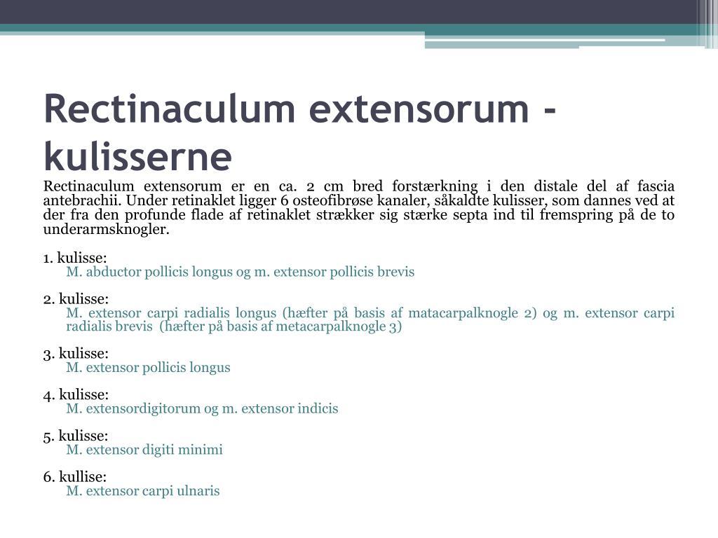 Rectinaculum extensorum - kulisserne