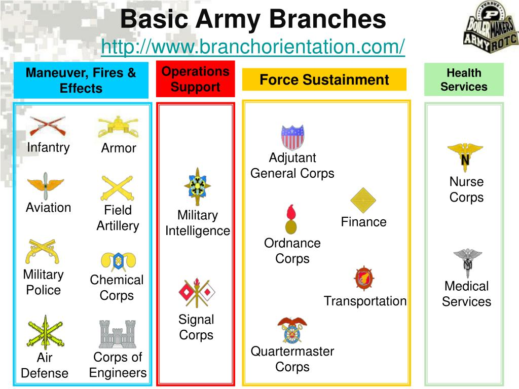 Basic Army Branches
