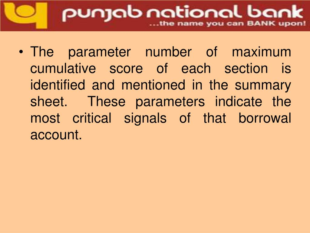 The parameter number of maximum cumulative score of each section is identified and mentioned in the summary sheet.  These parameters indicate the most critical signals of that borrowal account.