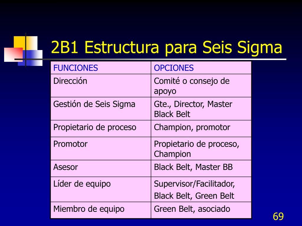 2B1 Estructura para Seis Sigma