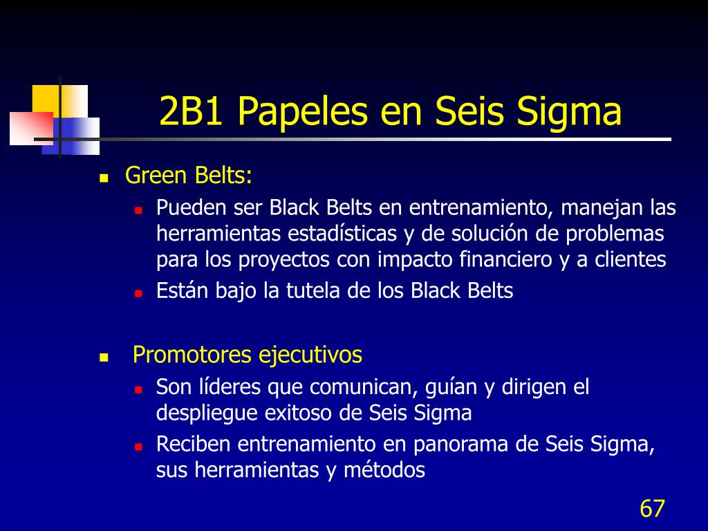 2B1 Papeles en Seis Sigma