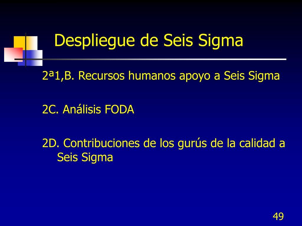 Despliegue de Seis Sigma