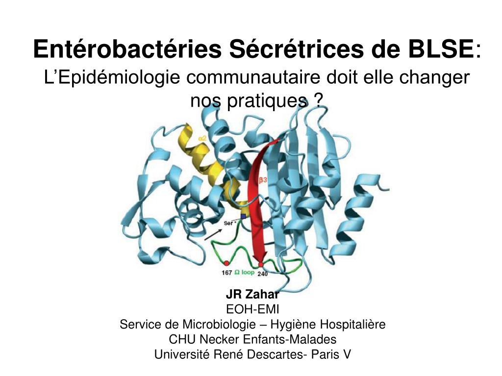 Entérobactéries Sécrétrices de BLSE