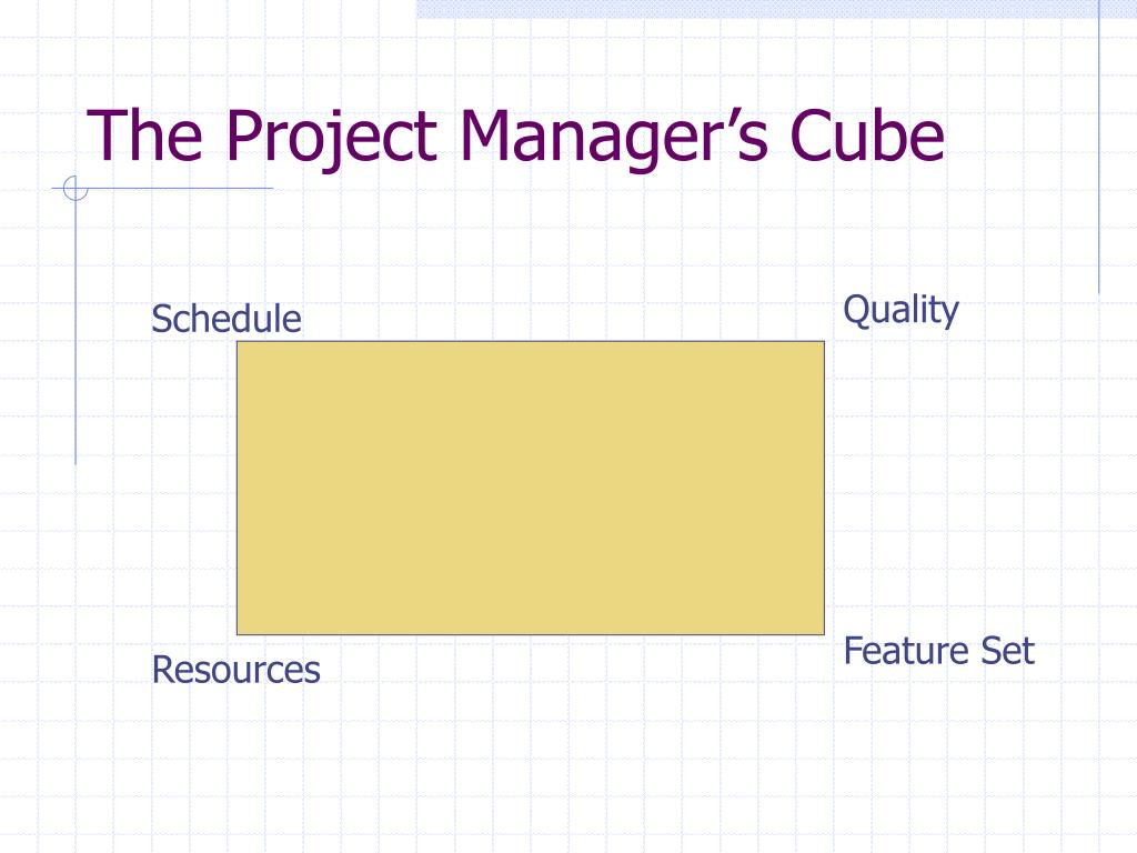 The Project Manager's Cube