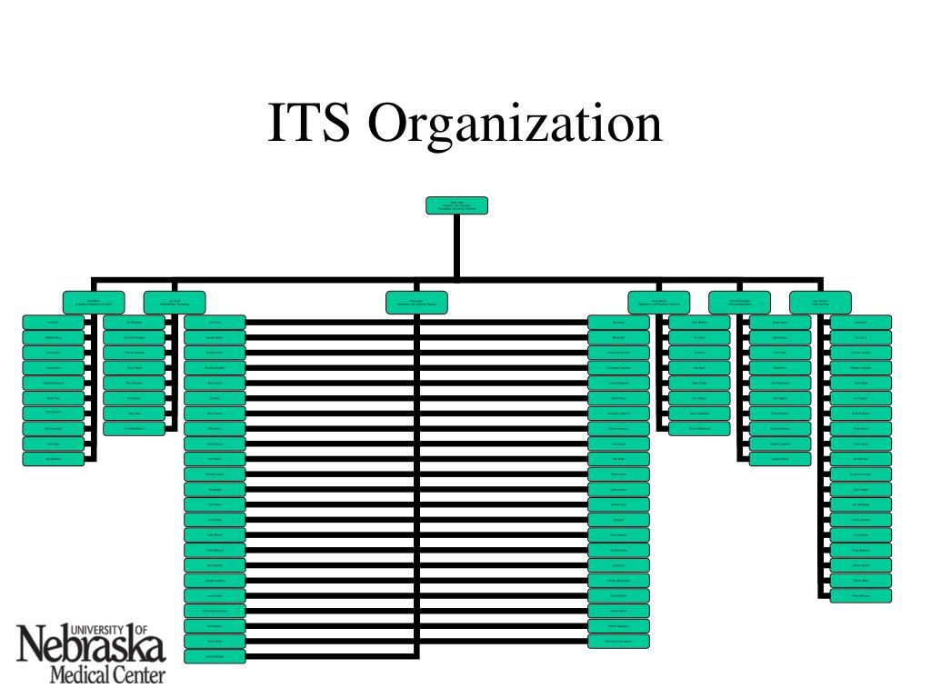 ITS Organization