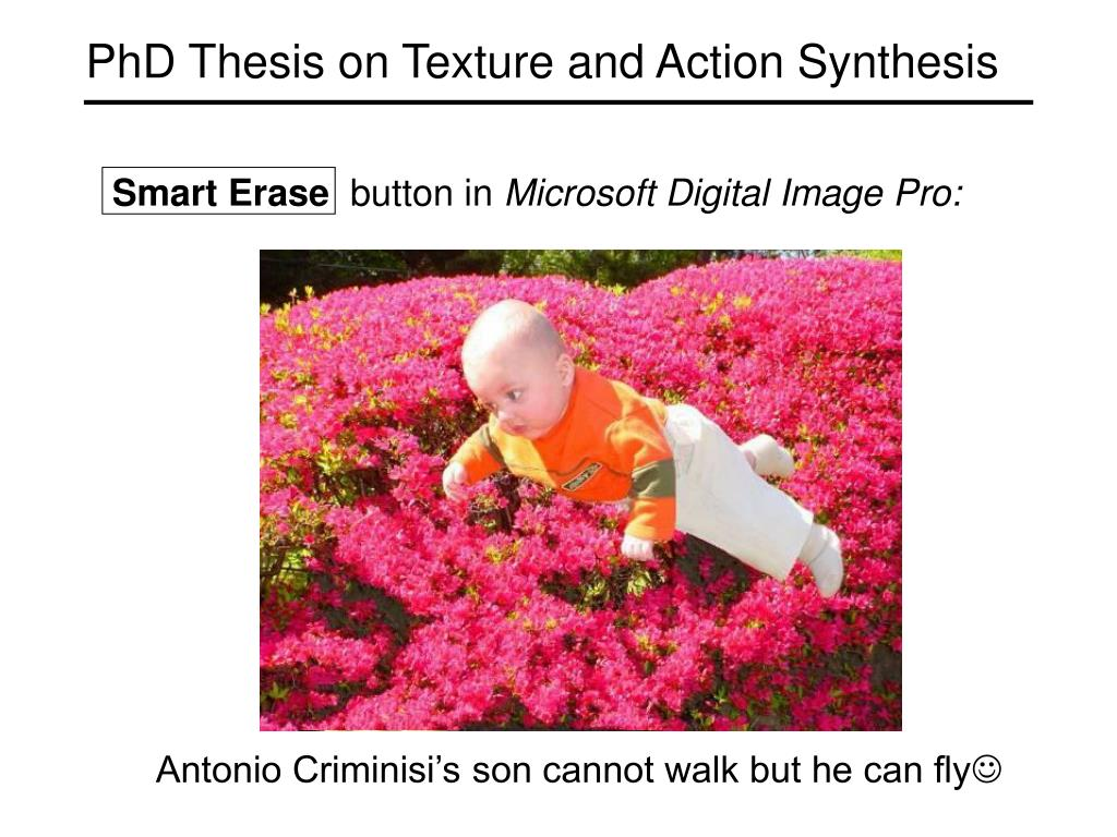 PhD Thesis on Texture and Action Synthesis