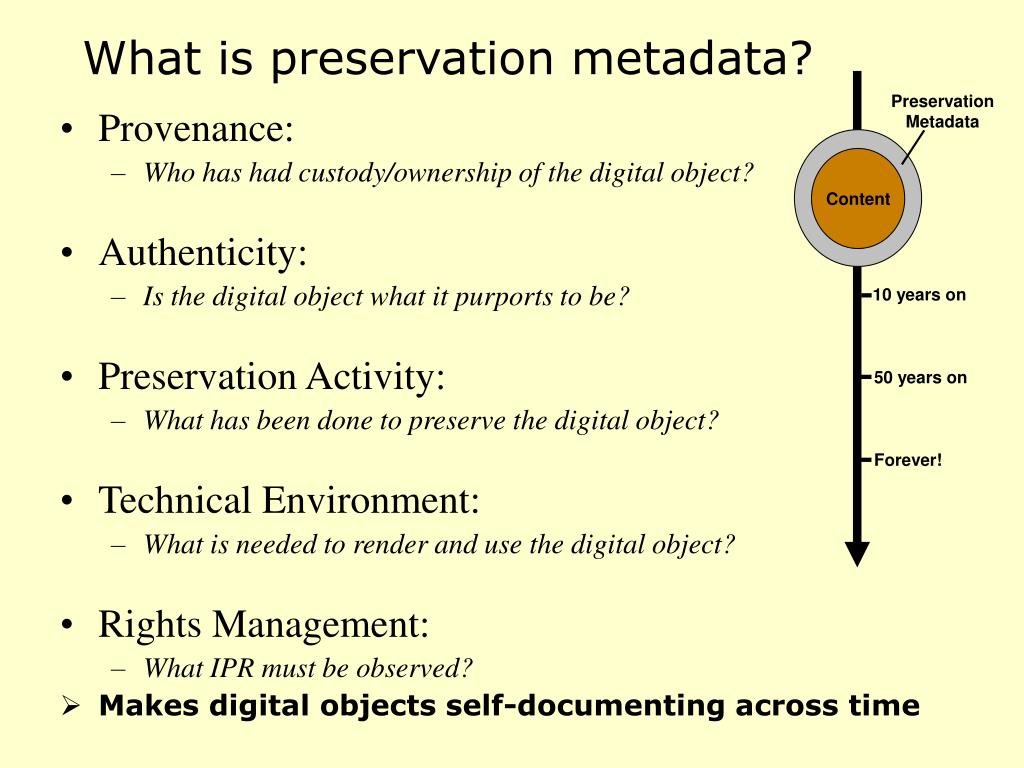 What is preservation metadata?