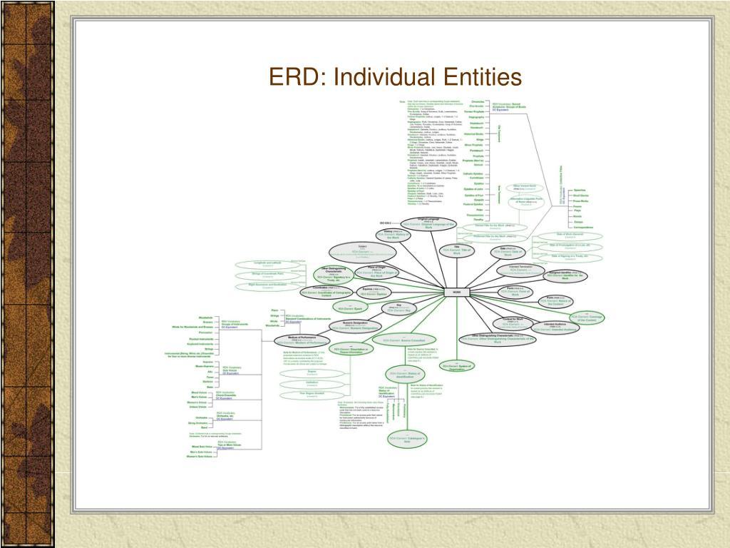 ERD: Individual Entities