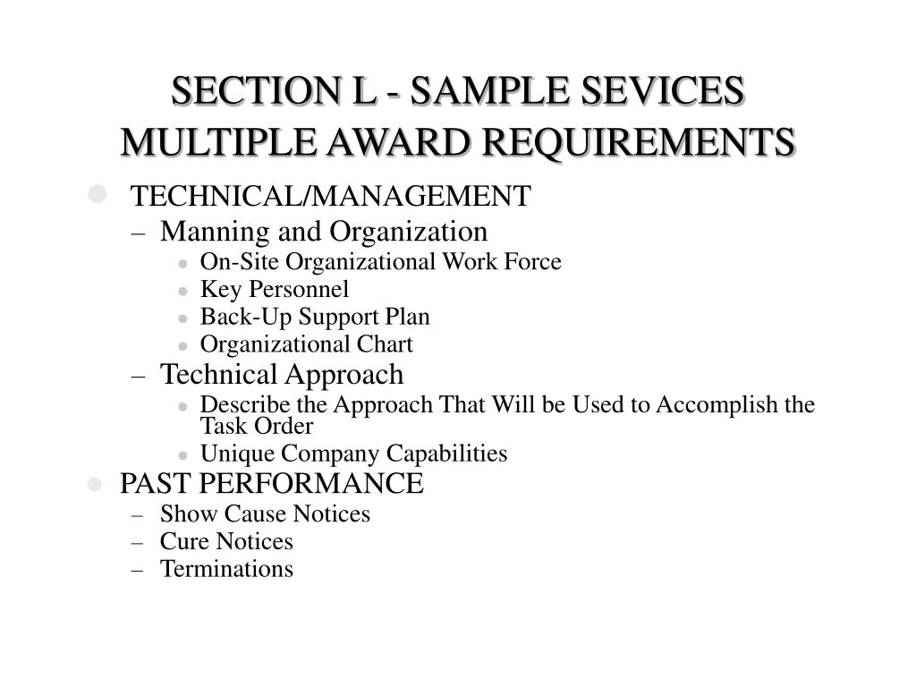 SECTION L - SAMPLE SEVICES MULTIPLE AWARD REQUIREMENTS
