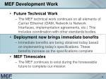 mef development work18