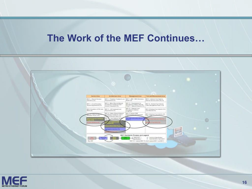 The Work of the MEF Continues…