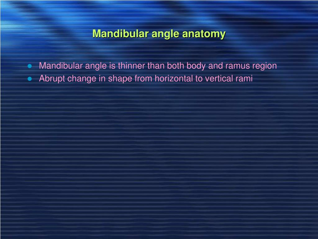 Mandibular angle anatomy
