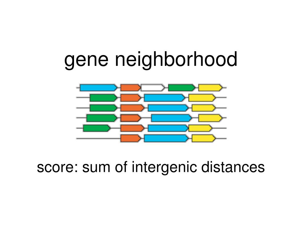 gene neighborhood