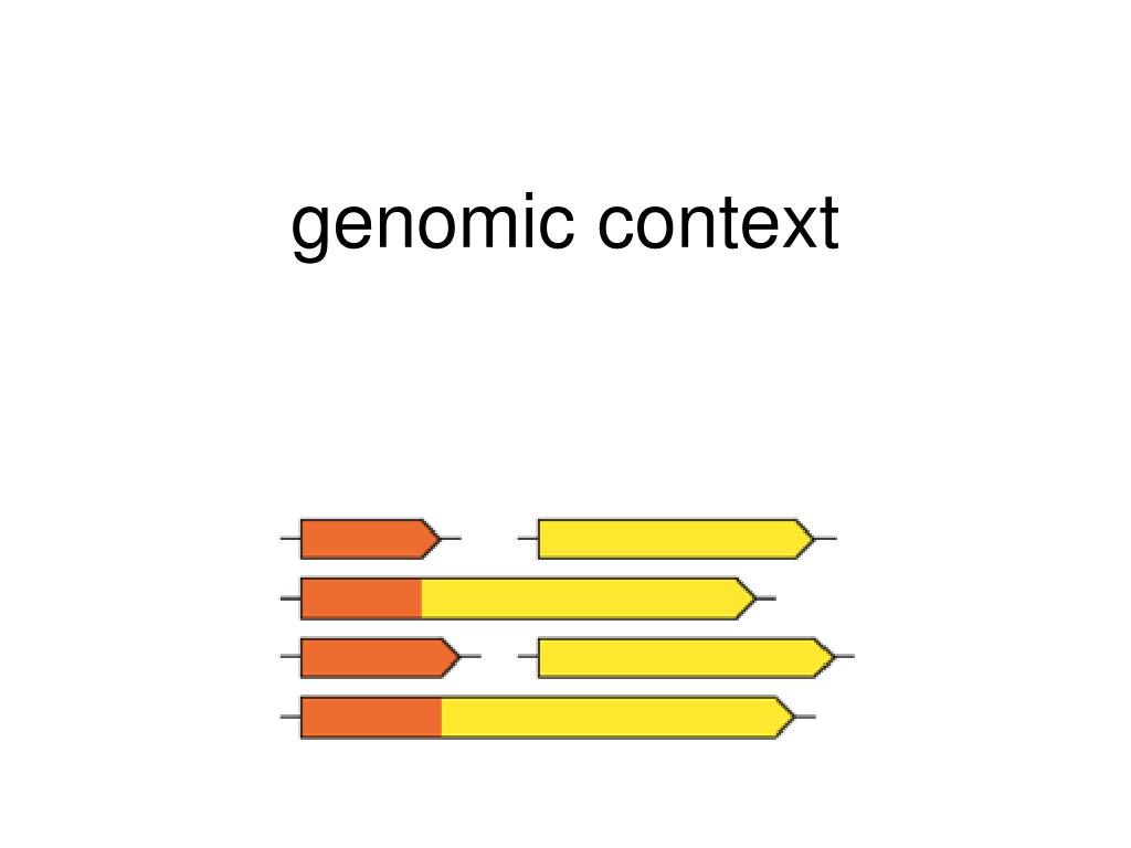genomic context