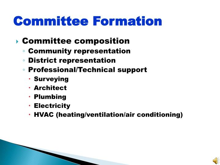 Committee Formation