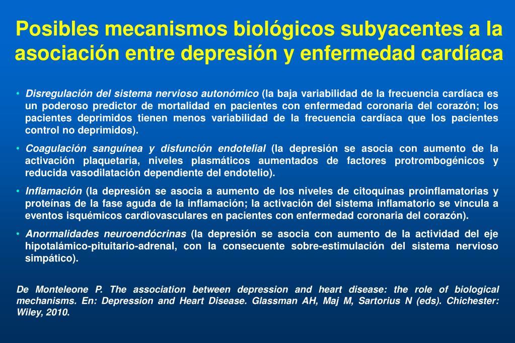 Posibles mecanismos biológicos subyacentes a la asociación entre depresión y enfermedad cardíaca