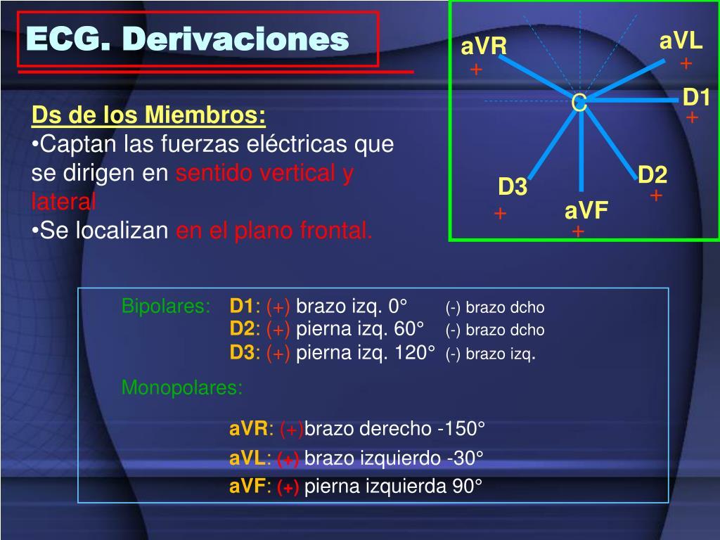 ECG. Derivaciones