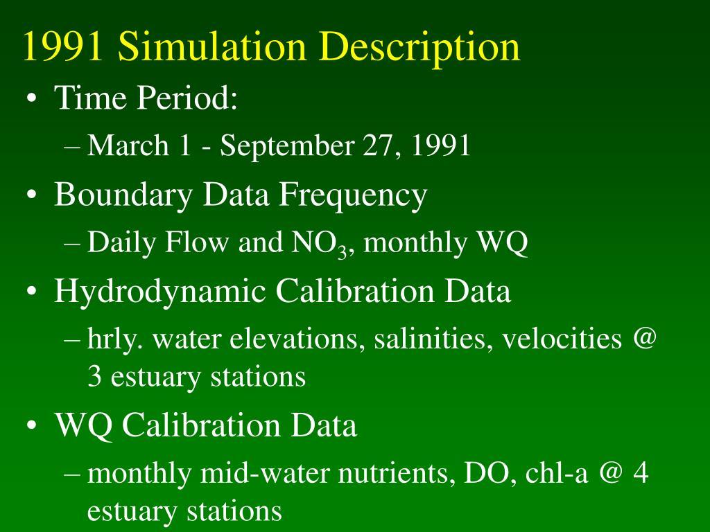 1991 Simulation Description